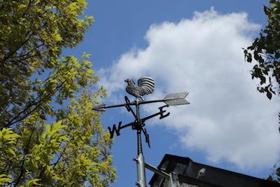 200424wethercock.JPG